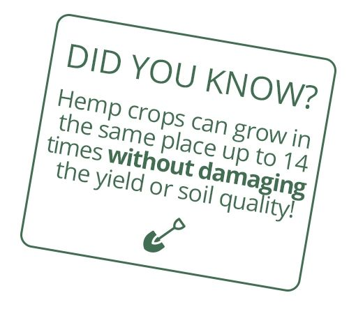 Did you know? The oldest fabric remnanent ever discovered is hemp